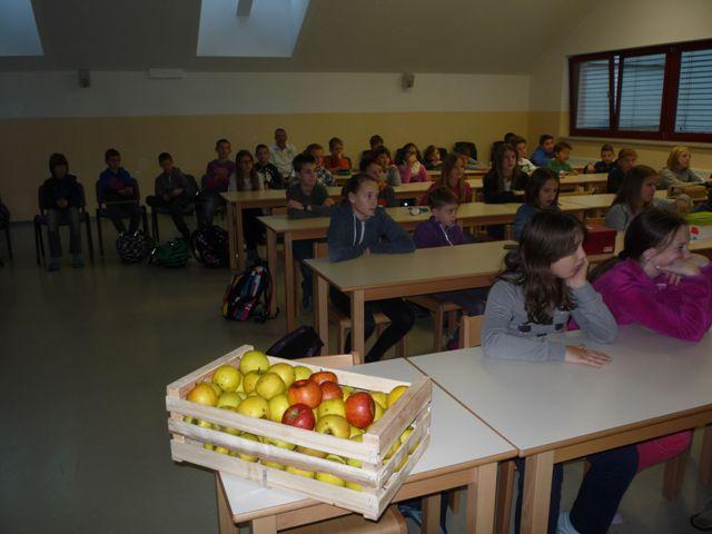 shema-solskega-sadja-8